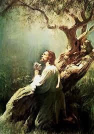 perseverancia del santo